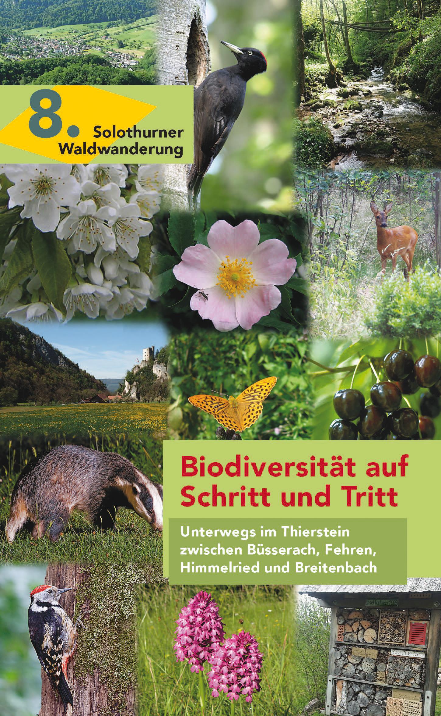 8. Biodiversität auf Schritt und Tritt